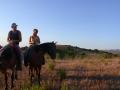 escursioni-cavallo.jpg